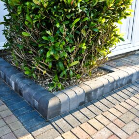 Flowerbed and step